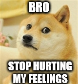 Sad Doge | BRO STOP HURTING MY FEELINGS | image tagged in sad doge | made w/ Imgflip meme maker