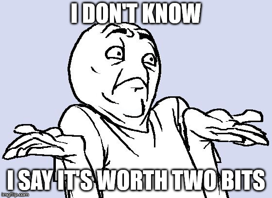 Shrug Cartoon | I DON'T KNOW I SAY IT'S WORTH TWO BITS | image tagged in shrug cartoon | made w/ Imgflip meme maker