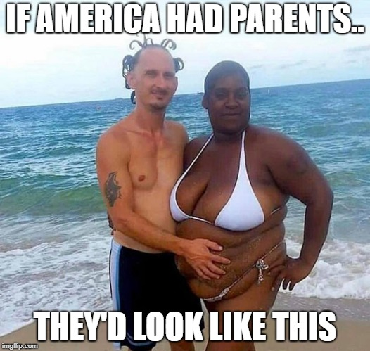 IF AMERICA HAD PARENTS.. THEY'D LOOK LIKE THIS | image tagged in wow | made w/ Imgflip meme maker