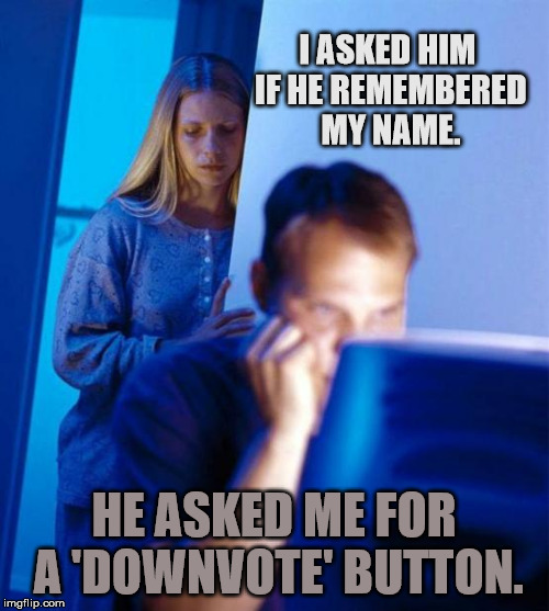 Redditors Wife Meme | I ASKED HIM IF HE REMEMBERED MY NAME. HE ASKED ME FOR A 'DOWNVOTE' BUTTON. | image tagged in memes,redditors wife | made w/ Imgflip meme maker
