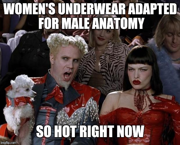 Mugatu So Hot Right Now Meme | WOMEN'S UNDERWEAR ADAPTED FOR MALE ANATOMY SO HOT RIGHT NOW | image tagged in memes,mugatu so hot right now | made w/ Imgflip meme maker