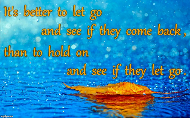 Hold or Go | It's  better  to  let  go and  see  if  they  come  back , than  to  hold  on and  see  if  they  let  go . | image tagged in let go,hold on | made w/ Imgflip meme maker