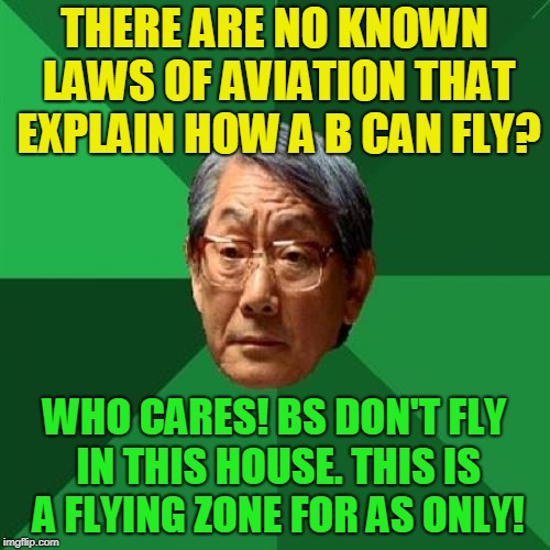 High Expectations Asian Father Meme | THERE ARE NO KNOWN LAWS OF AVIATION THAT EXPLAIN HOW A B CAN FLY? WHO CARES! BS DON'T FLY IN THIS HOUSE. THIS IS A FLYING ZONE FOR AS ONLY! | image tagged in memes,high expectations asian father | made w/ Imgflip meme maker