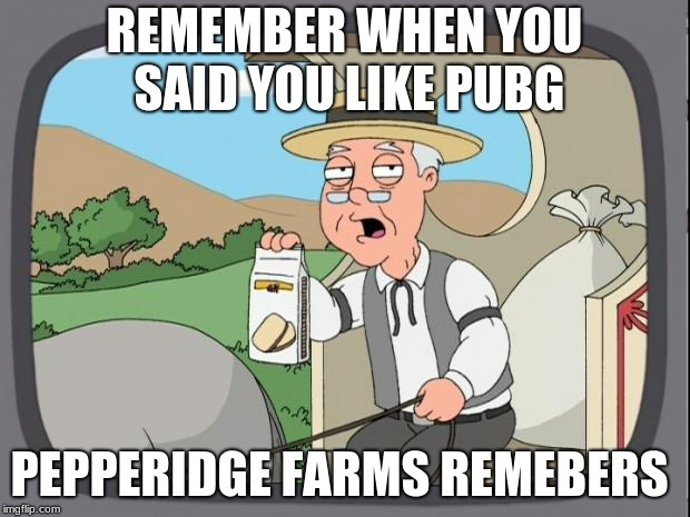 peperidge  |  REMEMBER WHEN YOU SAID YOU LIKE PUBG; PEPPERIDGE FARMS REMEBERS | image tagged in peperidge | made w/ Imgflip meme maker