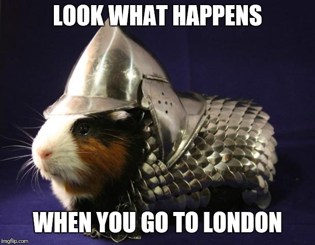 Guinea Pig |  LOOK WHAT HAPPENS; WHEN YOU GO TO LONDON | image tagged in guinea pig | made w/ Imgflip meme maker
