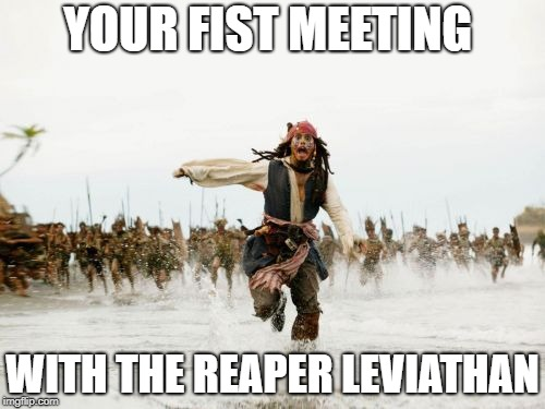Jack Sparrow Being Chased Meme | YOUR FIST MEETING WITH THE REAPER LEVIATHAN | image tagged in memes,jack sparrow being chased | made w/ Imgflip meme maker