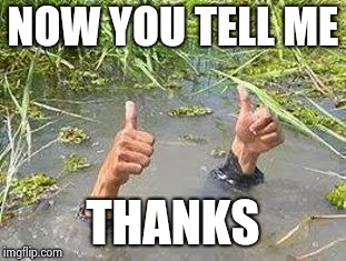 FLOODING THUMBS UP | NOW YOU TELL ME THANKS | image tagged in flooding thumbs up | made w/ Imgflip meme maker