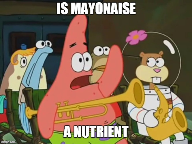 Is mayonnaise an instrument? | IS MAYONAISE A NUTRIENT | image tagged in is mayonnaise an instrument,memes | made w/ Imgflip meme maker