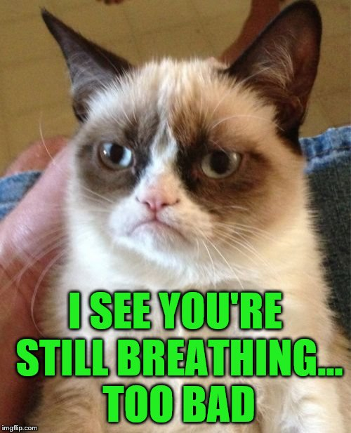 Grumpy Cat Meme | I SEE YOU'RE STILL BREATHING... TOO BAD | image tagged in memes,grumpy cat | made w/ Imgflip meme maker