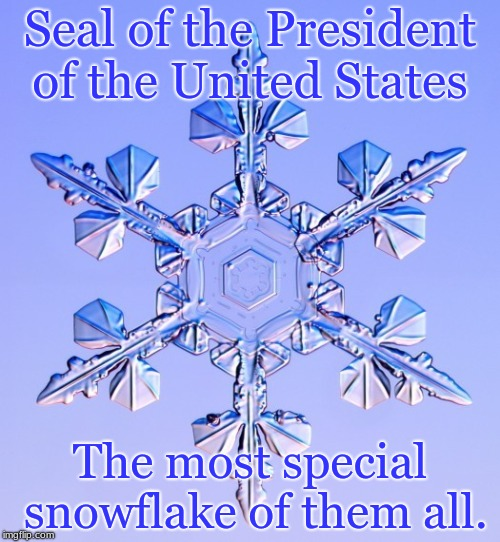 Seal of the President of the United States The most special snowflake of them all. | image tagged in special snowflake | made w/ Imgflip meme maker