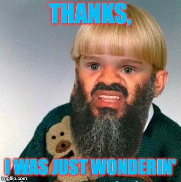 THANKS, I WAS JUST WONDERIN' | made w/ Imgflip meme maker
