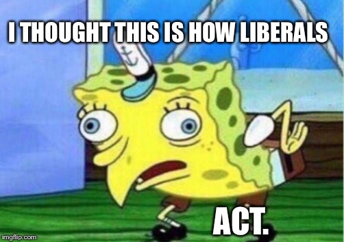 Mocking Spongebob Meme | I THOUGHT THIS IS HOW LIBERALS ACT. | image tagged in memes,mocking spongebob | made w/ Imgflip meme maker