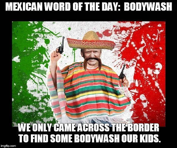 Trumps Mexican Words | MEXICAN WORD OF THE DAY:  BODYWASH WE ONLY CAME ACROSS THE BORDER TO FIND SOME BODYWASH OUR KIDS. | image tagged in trump,mexican,border,bodywash | made w/ Imgflip meme maker