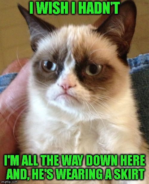 Grumpy Cat Meme | I WISH I HADN'T I'M ALL THE WAY DOWN HERE AND, HE'S WEARING A SKIRT | image tagged in memes,grumpy cat | made w/ Imgflip meme maker
