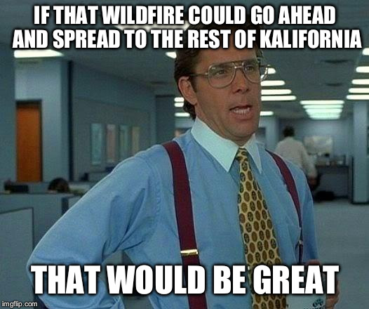 That Would Be Great Meme | IF THAT WILDFIRE COULD GO AHEAD AND SPREAD TO THE REST OF KALIFORNIA THAT WOULD BE GREAT | image tagged in memes,that would be great | made w/ Imgflip meme maker