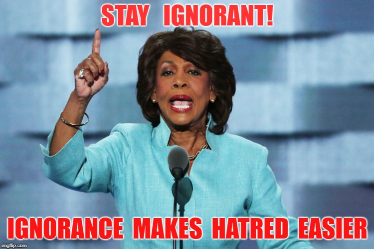 Haters are so ignorant | STAY   IGNORANT! IGNORANCE  MAKES  HATRED  EASIER | image tagged in maxine waters,hate,ignorance,socialism,stupid,democrat | made w/ Imgflip meme maker