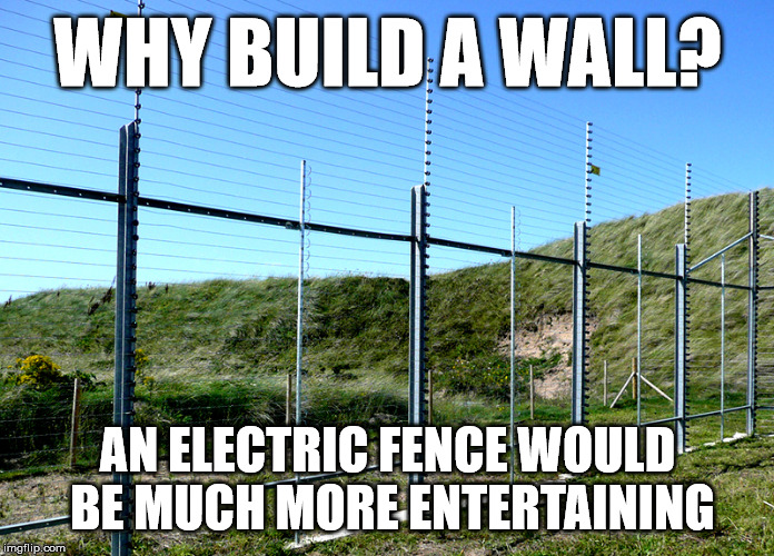 WHY BUILD A WALL? AN ELECTRIC FENCE WOULD BE MUCH MORE ENTERTAINING | image tagged in wall,electric fence | made w/ Imgflip meme maker