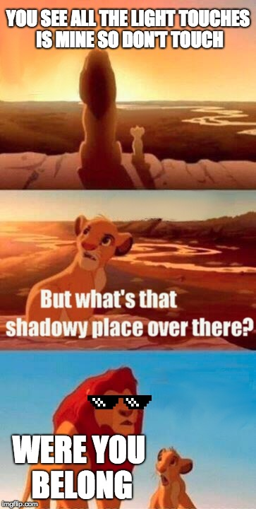 Simba Shadowy Place Meme | YOU SEE ALL THE LIGHT TOUCHES IS MINE SO DON'T TOUCH WERE YOU BELONG | image tagged in memes,simba shadowy place | made w/ Imgflip meme maker