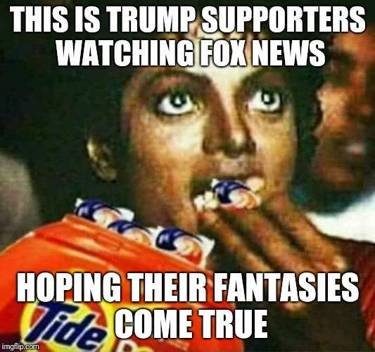 Tea party | THIS IS TRUMP SUPPORTERS WATCHING FOX NEWS HOPING THEIR FANTASIES COME TRUE | image tagged in obama | made w/ Imgflip meme maker