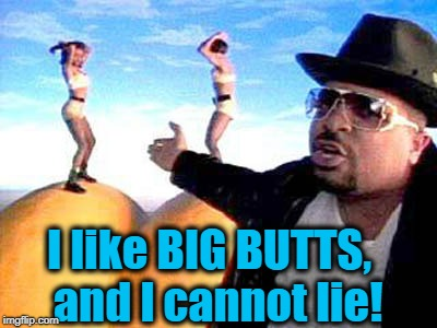 I like BIG BUTTS,  and I cannot lie! | made w/ Imgflip meme maker
