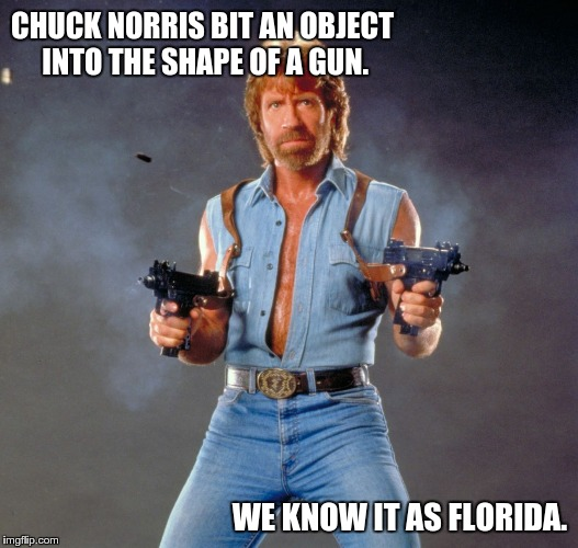 Chuck Norris Guns | CHUCK NORRIS BIT AN OBJECT INTO THE SHAPE OF A GUN. WE KNOW IT AS FLORIDA. | image tagged in memes,chuck norris guns,chuck norris,guns,pop tarts | made w/ Imgflip meme maker