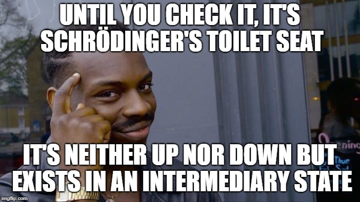 Roll Safe Think About It Meme | UNTIL YOU CHECK IT, IT'S SCHRÖDINGER'S TOILET SEAT IT'S NEITHER UP NOR DOWN BUT EXISTS IN AN INTERMEDIARY STATE | image tagged in memes,roll safe think about it | made w/ Imgflip meme maker