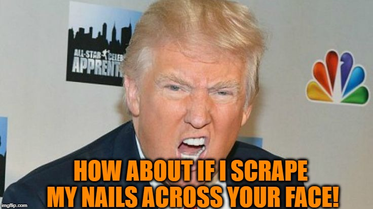 trump mad | HOW ABOUT IF I SCRAPE MY NAILS ACROSS YOUR FACE! | image tagged in trump mad | made w/ Imgflip meme maker