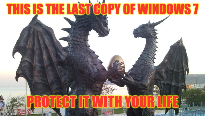 dragon couple | THIS IS THE LAST COPY OF WINDOWS 7 PROTECT IT WITH YOUR LIFE | image tagged in dragon couple | made w/ Imgflip meme maker