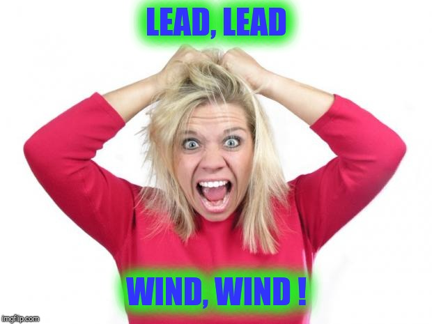 Hair Pulling | LEAD, LEAD WIND, WIND ! | image tagged in hair pulling | made w/ Imgflip meme maker