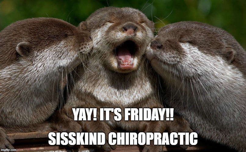 SISSKIND CHIROPRACTIC YAY! IT'S FRIDAY!! | image tagged in yay it's friday | made w/ Imgflip meme maker