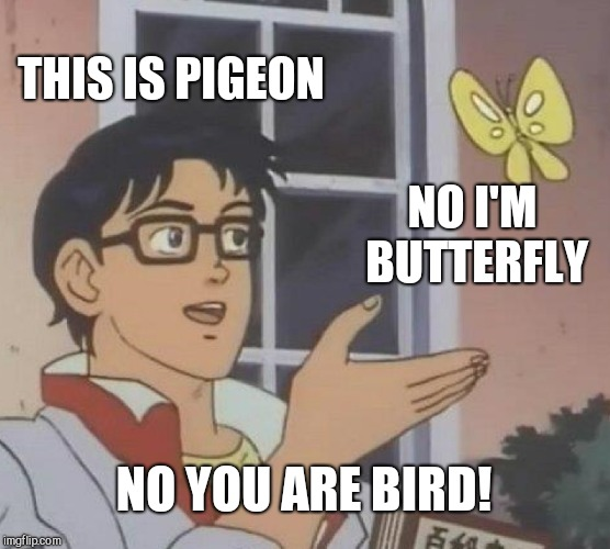 Is This A Pigeon Meme | THIS IS PIGEON NO I'M BUTTERFLY NO YOU ARE BIRD! | image tagged in memes,is this a pigeon | made w/ Imgflip meme maker
