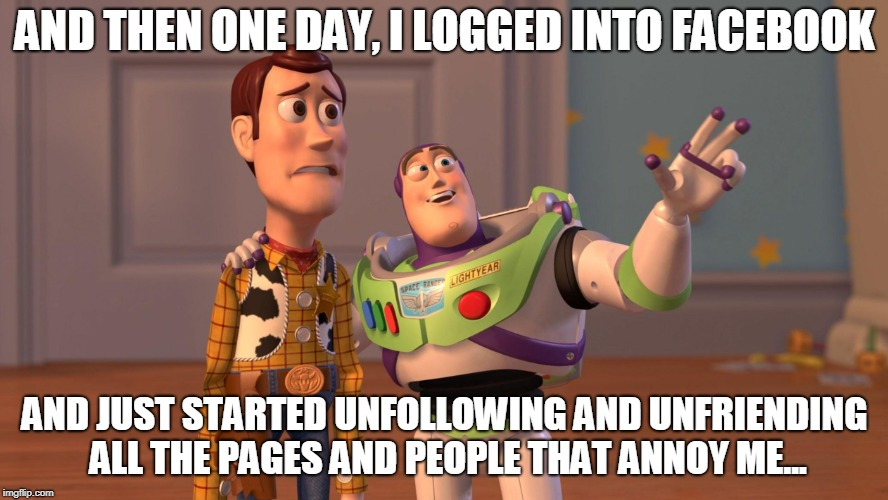 Instead of arguing, just remove.  You Owe Them Nothing. | AND THEN ONE DAY, I LOGGED INTO FACEBOOK AND JUST STARTED UNFOLLOWING AND UNFRIENDING ALL THE PAGES AND PEOPLE THAT ANNOY ME... | image tagged in woody and buzz lightyear everywhere widescreen,facebook | made w/ Imgflip meme maker