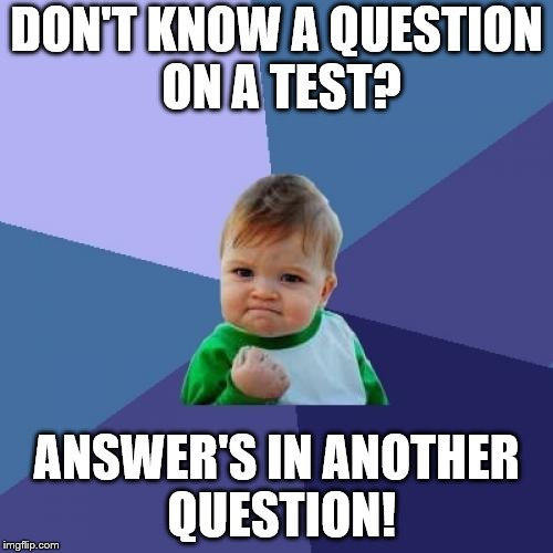 Success Kid Meme | DON'T KNOW A QUESTION ON A TEST? ANSWER'S IN ANOTHER QUESTION! | image tagged in memes,success kid | made w/ Imgflip meme maker