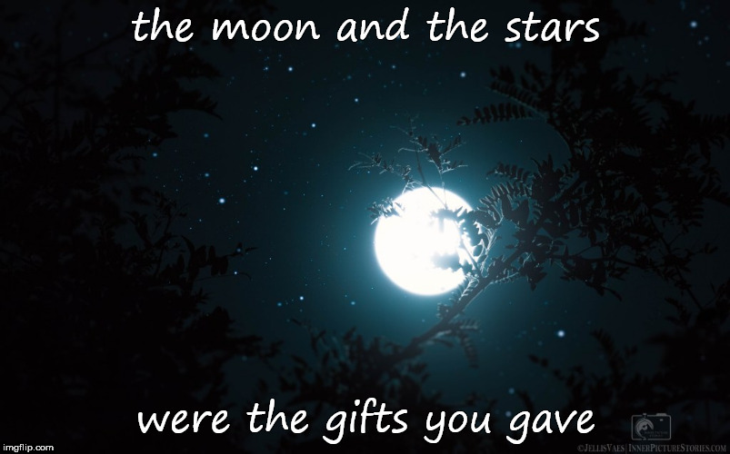 Love | the moon and the stars were the gifts you gave | image tagged in romance,i love you | made w/ Imgflip meme maker