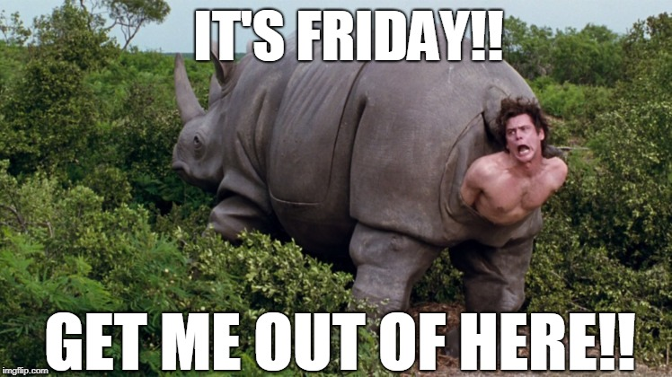 IT'S FRIDAY!! GET ME OUT OF HERE!! | image tagged in ace ventura rhino | made w/ Imgflip meme maker