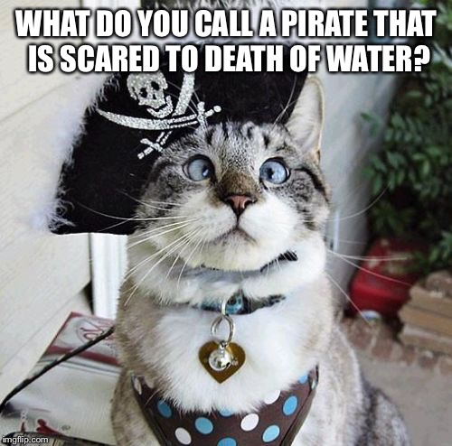 Spangles Meme | WHAT DO YOU CALL A PIRATE THAT IS SCARED TO DEATH OF WATER? | image tagged in memes,spangles | made w/ Imgflip meme maker