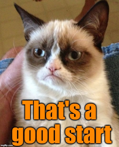 Grumpy Cat Meme | That's a good start | image tagged in memes,grumpy cat | made w/ Imgflip meme maker