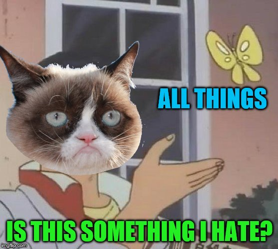 Yes? | ALL THINGS IS THIS SOMETHING I HATE? | image tagged in memes,is this a pigeon,grumpy cat,i hate it | made w/ Imgflip meme maker