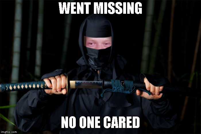 WENT MISSING NO ONE CARED | image tagged in bad luck brian ninja | made w/ Imgflip meme maker