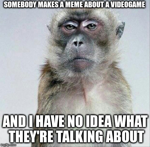 Face I Make When | SOMEBODY MAKES A MEME ABOUT A VIDEOGAME AND I HAVE NO IDEA WHAT THEY'RE TALKING ABOUT | image tagged in blank face stare | made w/ Imgflip meme maker