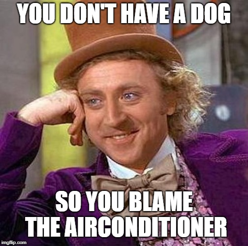 Creepy Condescending Wonka Meme | YOU DON'T HAVE A DOG SO YOU BLAME THE AIRCONDITIONER | image tagged in memes,creepy condescending wonka | made w/ Imgflip meme maker