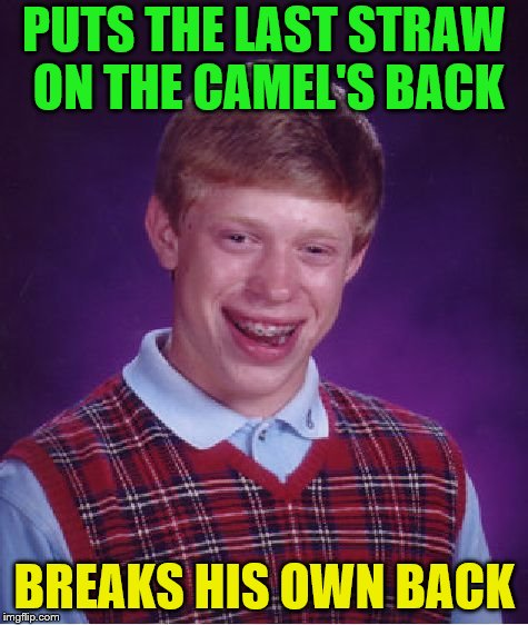 Bad Luck Brian Meme | PUTS THE LAST STRAW ON THE CAMEL'S BACK BREAKS HIS OWN BACK | image tagged in memes,bad luck brian | made w/ Imgflip meme maker