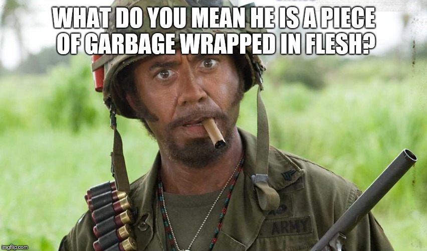 What do you mean? | WHAT DO YOU MEAN HE IS A PIECE OF GARBAGE WRAPPED IN FLESH? | image tagged in what do you mean | made w/ Imgflip meme maker