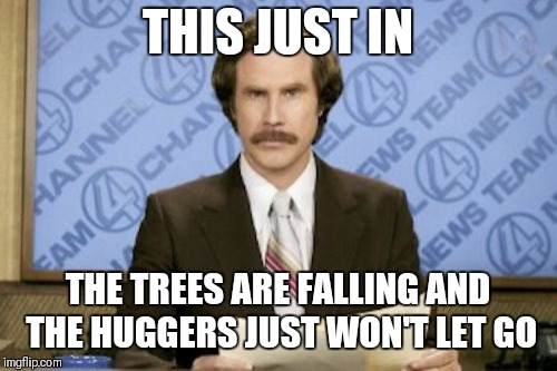 For the treeeees!!!!!!! | THIS JUST IN THE TREES ARE FALLING AND THE HUGGERS JUST WON'T LET GO | image tagged in memes,ron burgundy | made w/ Imgflip meme maker