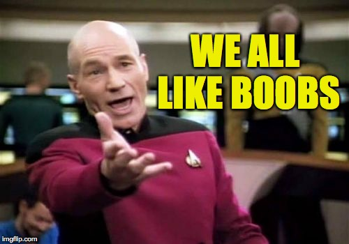 Picard Wtf Meme | WE ALL LIKE BOOBS | image tagged in memes,picard wtf | made w/ Imgflip meme maker