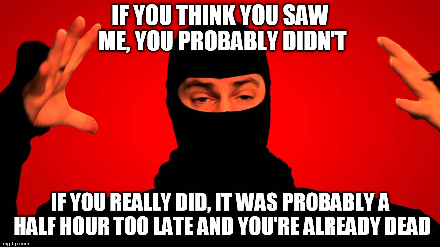 Ask a Ninja | IF YOU THINK YOU SAW ME, YOU PROBABLY DIDN'T IF YOU REALLY DID, IT WAS PROBABLY A HALF HOUR TOO LATE AND YOU'RE ALREADY DEAD | image tagged in ask a ninja hands up | made w/ Imgflip meme maker