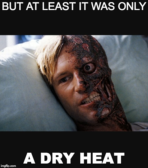 Only A Dry Heat | BUT AT LEAST IT WAS ONLY A DRY HEAT | image tagged in two face,burning man,burn,heat,summer,misery | made w/ Imgflip meme maker