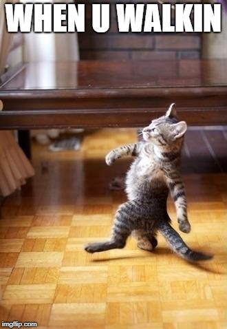 Cool Cat Stroll | WHEN U WALKIN | image tagged in memes,cool cat stroll | made w/ Imgflip meme maker