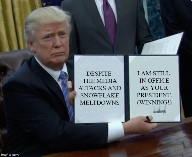 Trump Bill Signing Meme | DESPITE THE MEDIA ATTACKS AND SNOWFLAKE MELTDOWNS I AM STILL IN OFFICE AS YOUR PRESIDENT. (WINNING!) | image tagged in memes,trump bill signing | made w/ Imgflip meme maker
