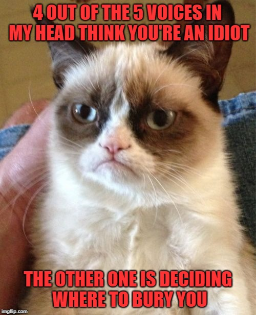 Do you ever listen to the voices? | 4 OUT OF THE 5 VOICES IN MY HEAD THINK YOU'RE AN IDIOT THE OTHER ONE IS DECIDING WHERE TO BURY YOU | image tagged in memes,grumpy cat,voices in my head,funny,cats,grumpy | made w/ Imgflip meme maker